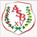 association-sportive-bressolaise-xv